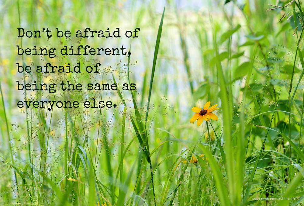 don't be afraid of being different, be afraid of being the same as everyone else quote with an orange flower in the middle of green grass